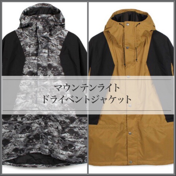 f:id:t-naito-tnf:20201204134747j:plain
