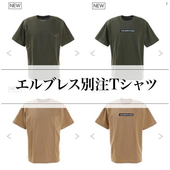 f:id:t-naito-tnf:20210227191045j:plain
