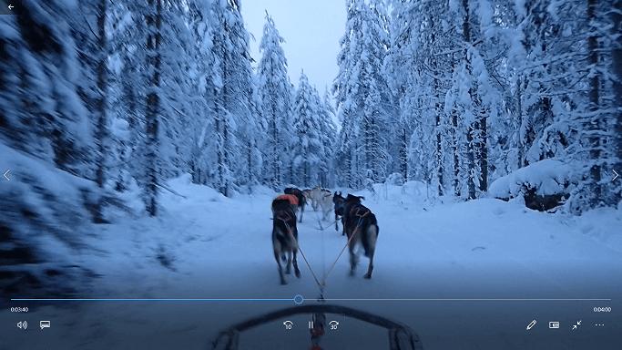 ハスキー犬そり体験中の景色