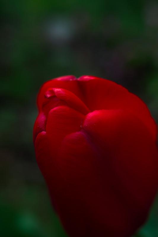 f:id:t-sakai:20120508202305j:image