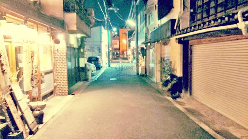 f:id:t-shimozono:20161220152029j:plain