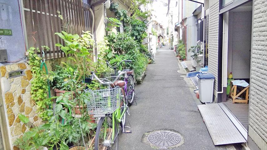 f:id:t-shimozono:20171025154727j:plain