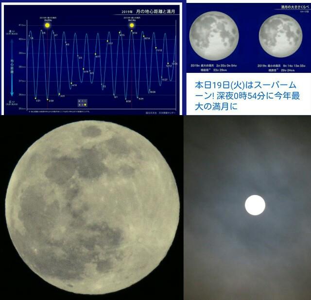 f:id:t-star:20190219224753j:image
