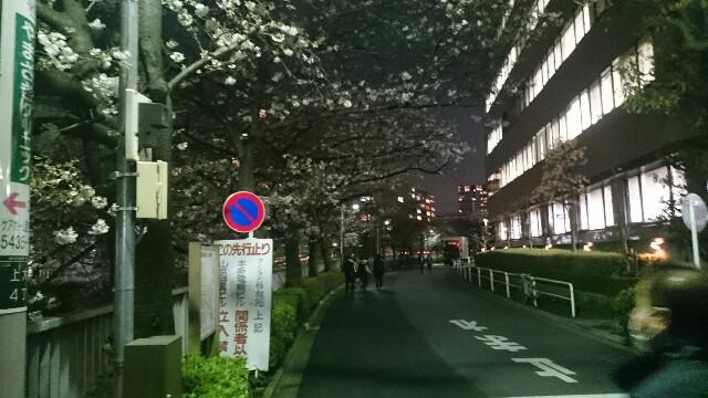f:id:t1000zawa:20170405091712j:image