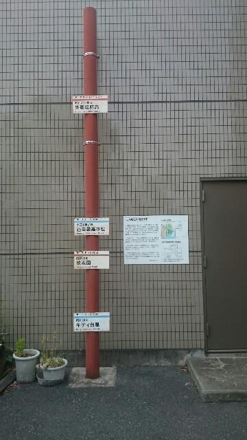 f:id:t1000zawa:20171117165517j:image