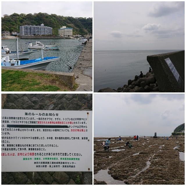 f:id:t1000zawa:20200420231818j:image