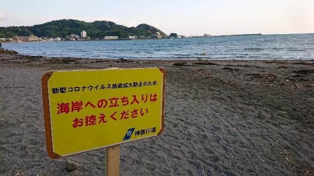 f:id:t1000zawa:20200429000159j:image