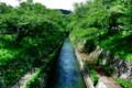 京都新聞写真コンテスト・琵琶湖疏水映える緑水