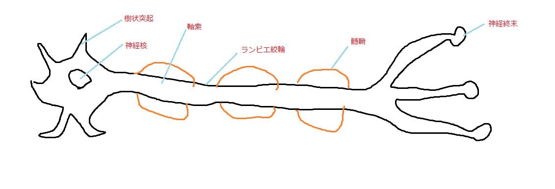 f:id:t212:20200426134928p:plain