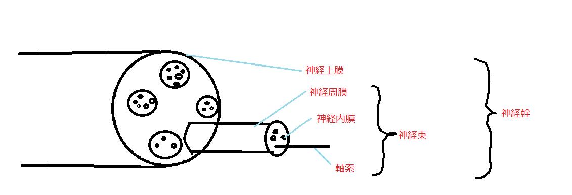 f:id:t212:20200426142127p:plain