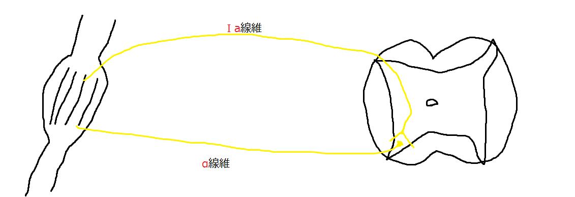 f:id:t212:20200502193924p:plain