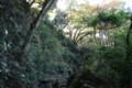 化粧坂から源氏山公園へ