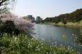 半蔵門から桜田門への散歩中の風景
