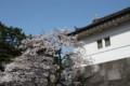桜田門を飾る桜
