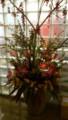 美容院の花