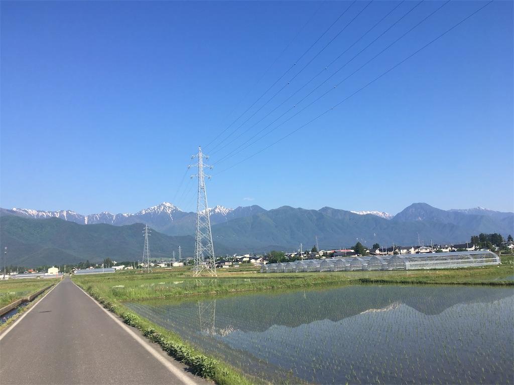 f:id:t_hasegawa-from-Azumino:20180526173148j:image