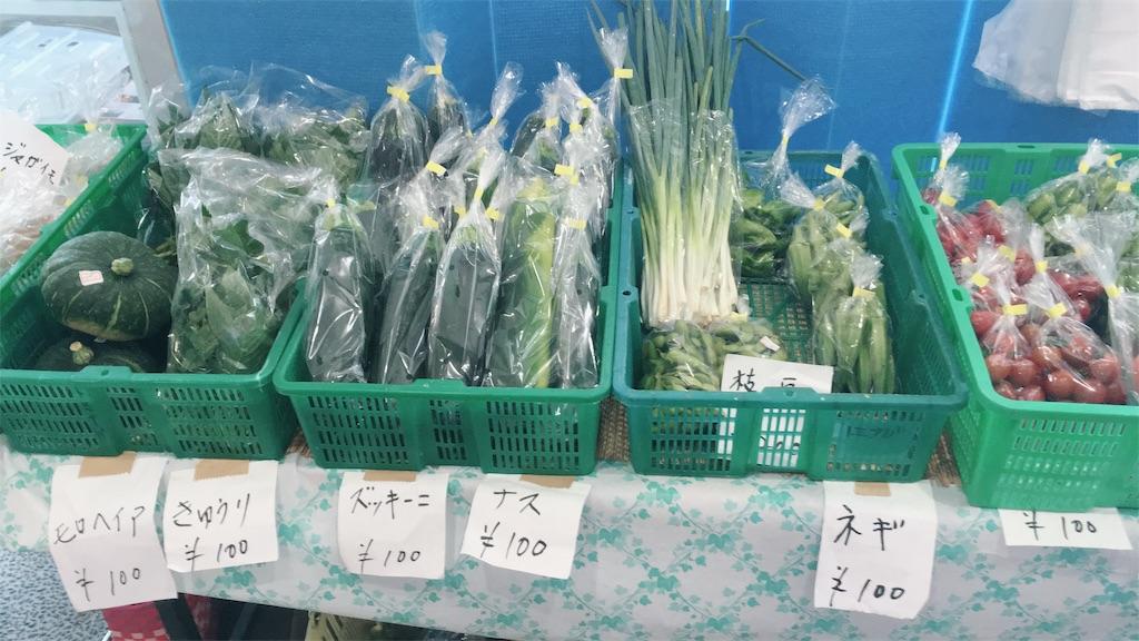 f:id:t_hasegawa-from-Azumino:20180810160447j:image