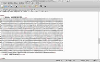 VPNサーバー設定(ovpn)ファイルの編集