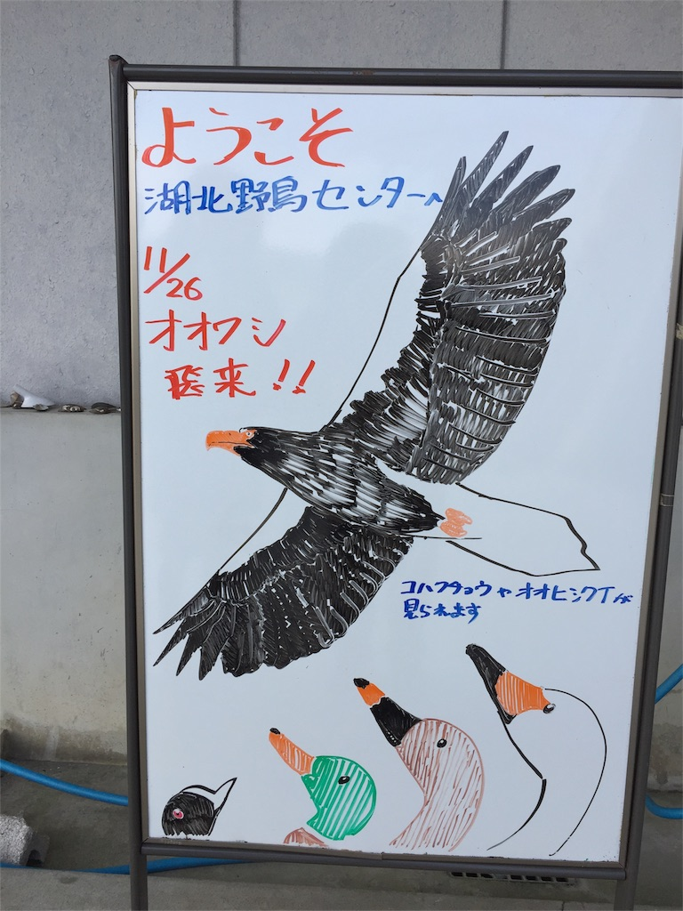 f:id:t_yamarimo:20161218105357j:plain