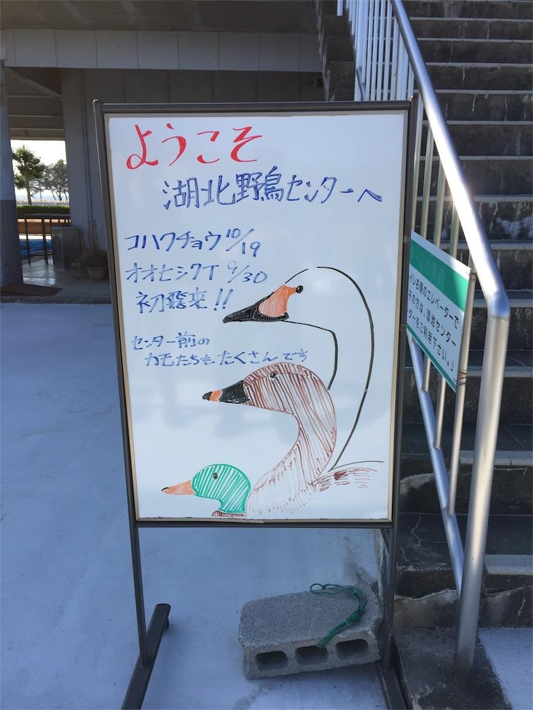 f:id:t_yamarimo:20161218110747j:plain
