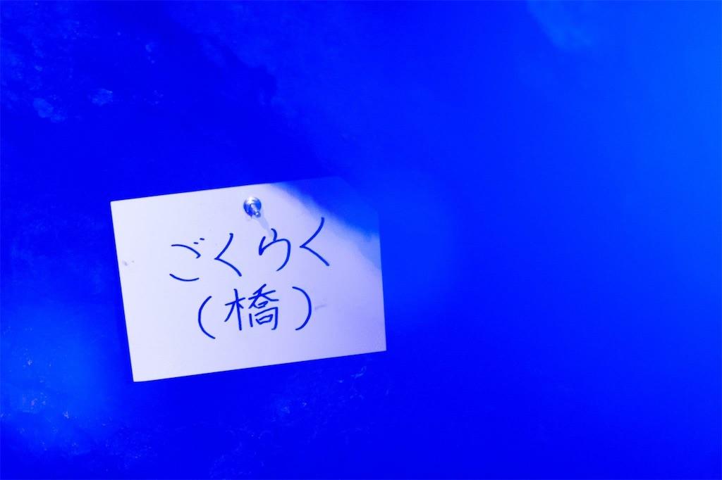 f:id:t_yamarimo:20170316121949j:image