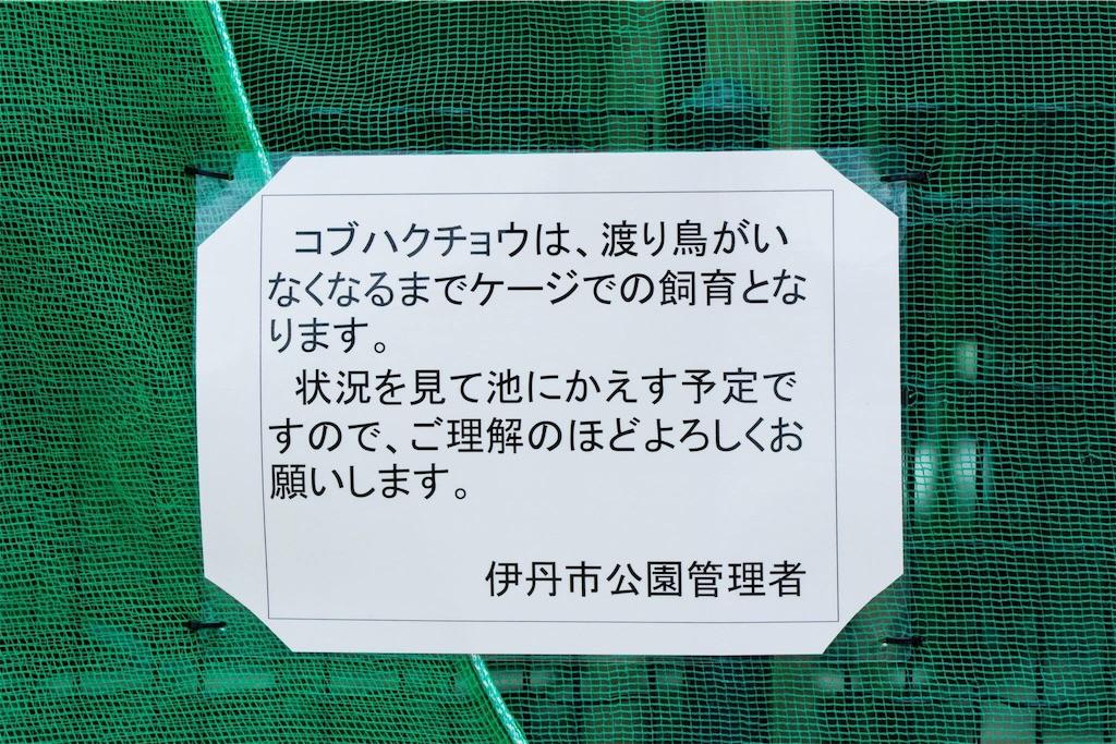 f:id:t_yamarimo:20170418124201j:image