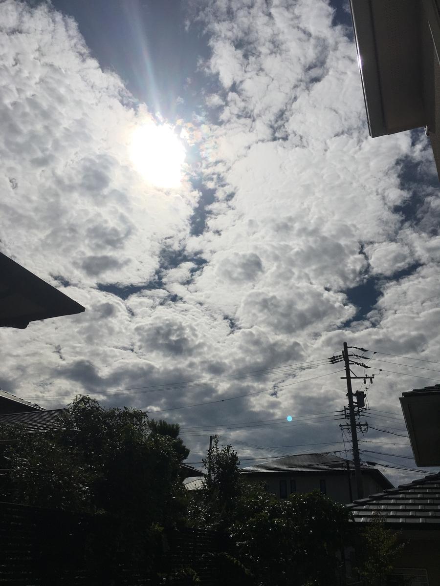f:id:ta-kun1970:20191020105252j:plain
