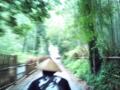 [京都] 竹林を駆け抜ける人力車