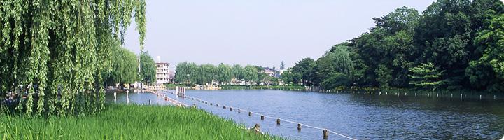f:id:taamori1229:20141208225012j:plain