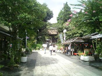 f:id:taamori1229:20141211103731j:plain