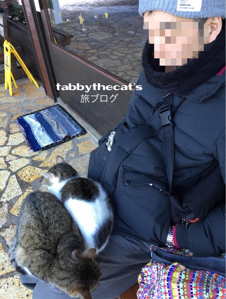 f:id:tabbythecat:20170918204600j:image