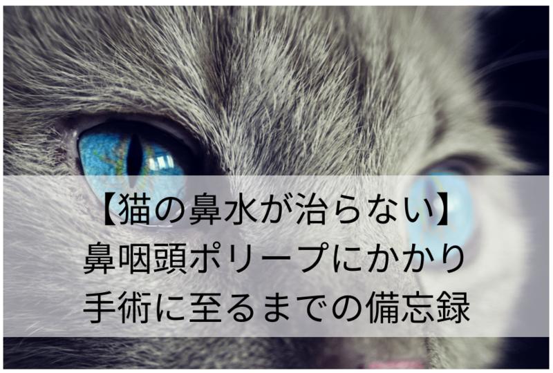 f:id:tabi-baro:20200706110144p:plain