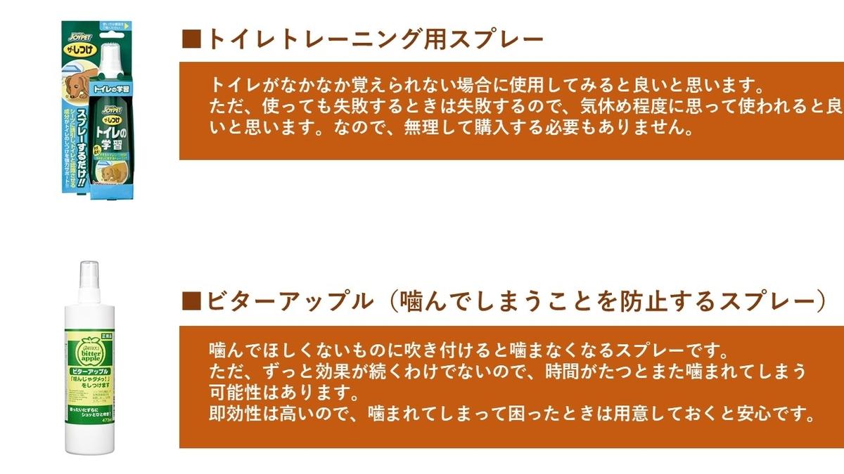 f:id:tabi-inu:20200229213820j:plain
