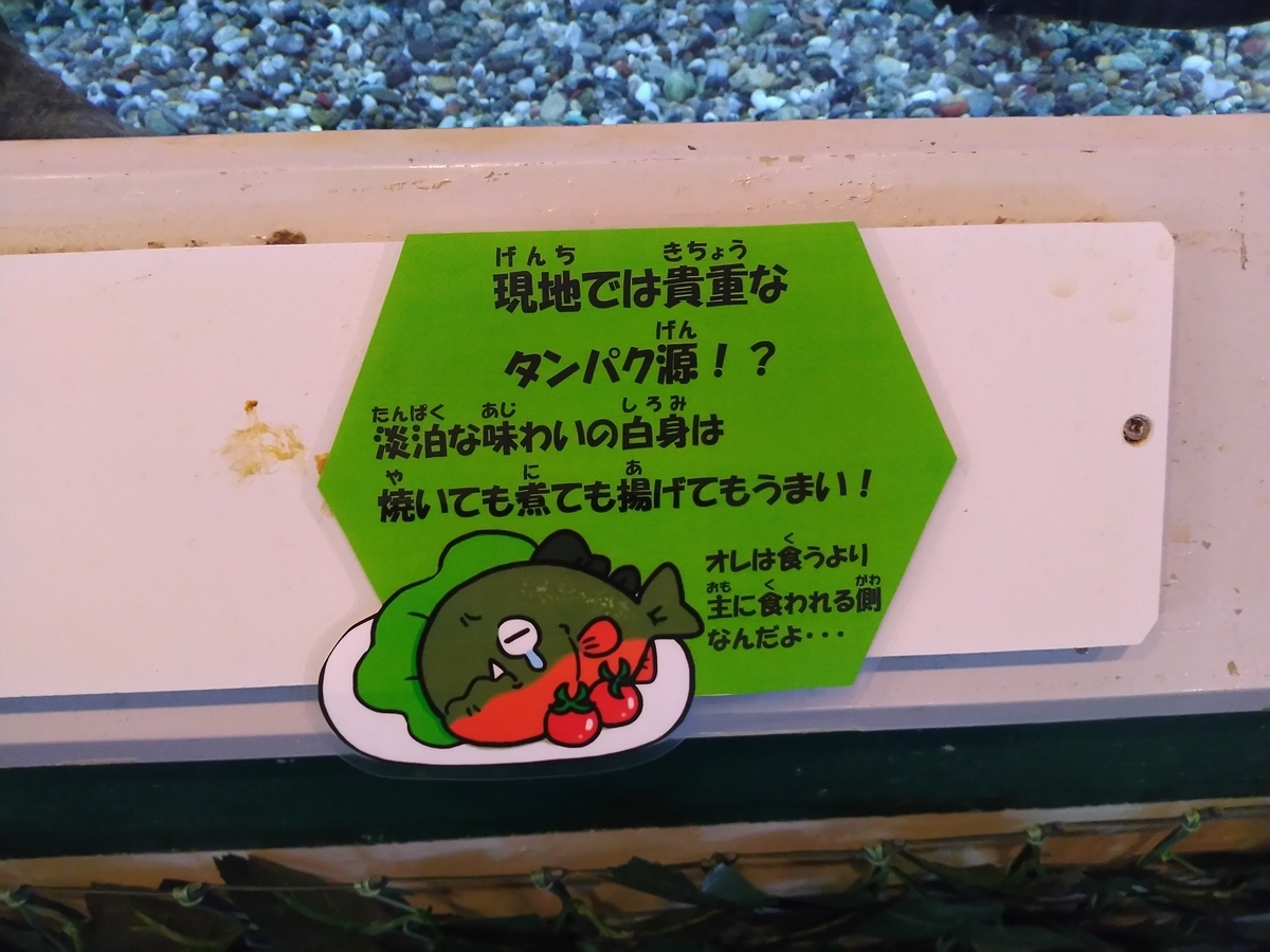 f:id:tabihiyoko:20210603220028j:plain