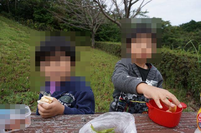 f:id:tabinidetakamo:20201018225035j:plain