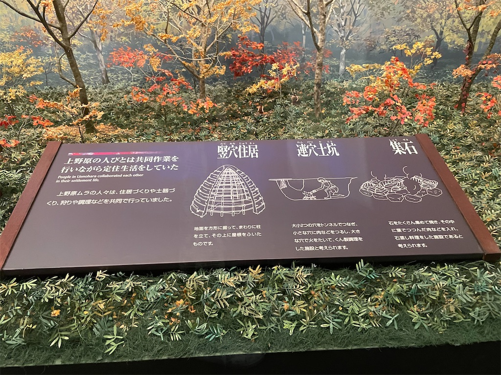 f:id:tabiryokouchang:20201207200653j:image