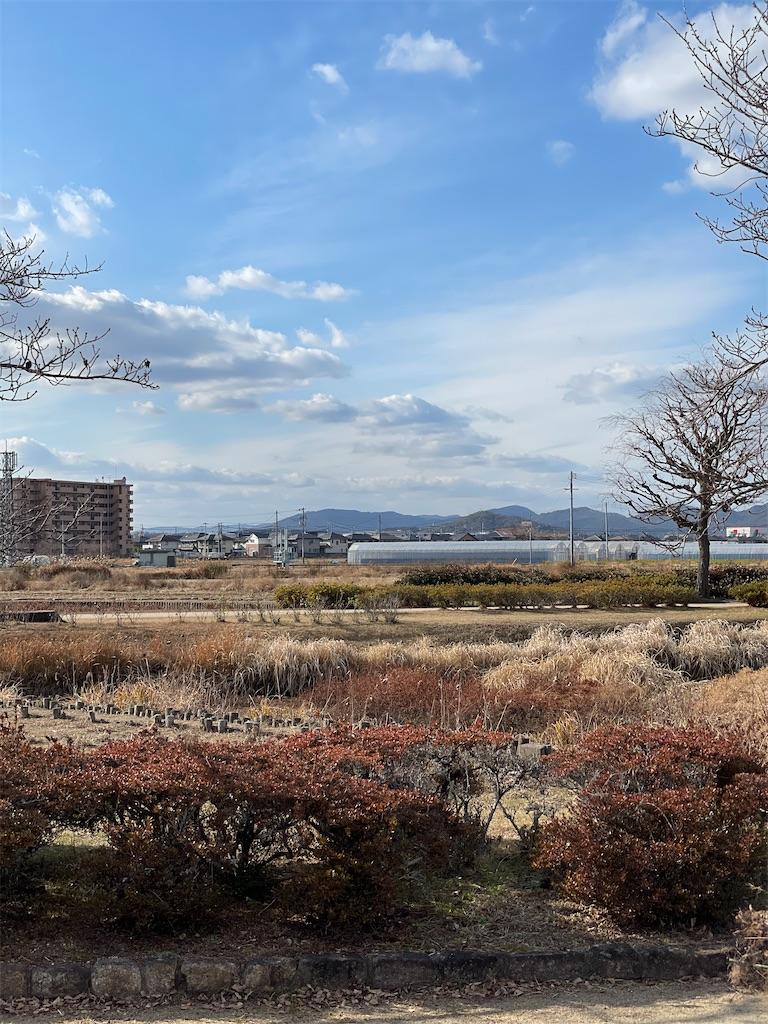 f:id:tabiryokouchang:20210103200655j:image