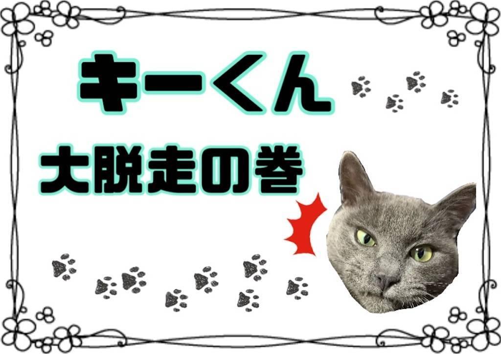 f:id:tabishite_korea:20210212204616j:image