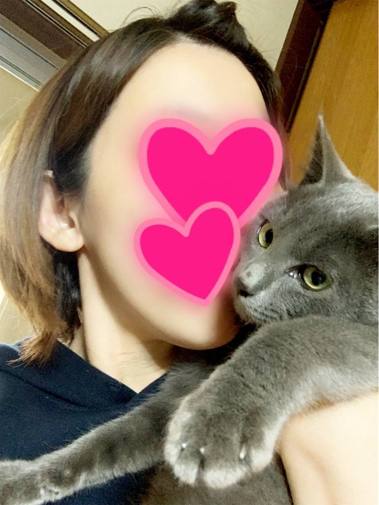 f:id:tabishite_korea:20210212204715j:image
