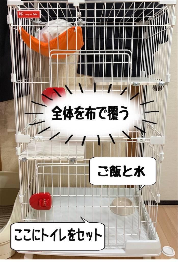 f:id:tabishite_korea:20210214080711j:image