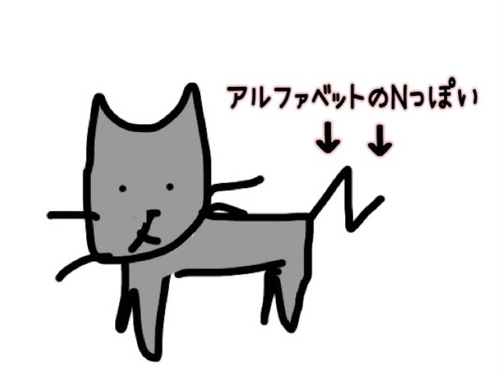 f:id:tabishite_korea:20210217194036j:image