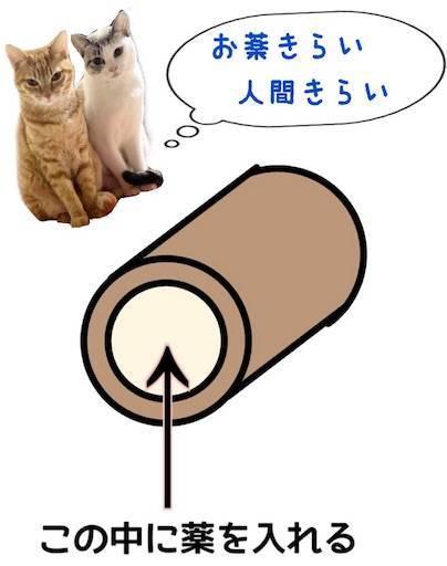 f:id:tabishite_korea:20210225180211j:image