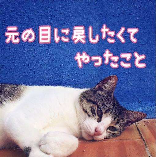 f:id:tabishite_korea:20210314225200j:image