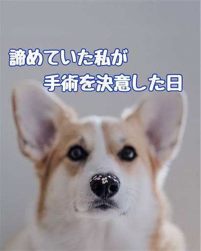 f:id:tabishite_korea:20210321234214j:image