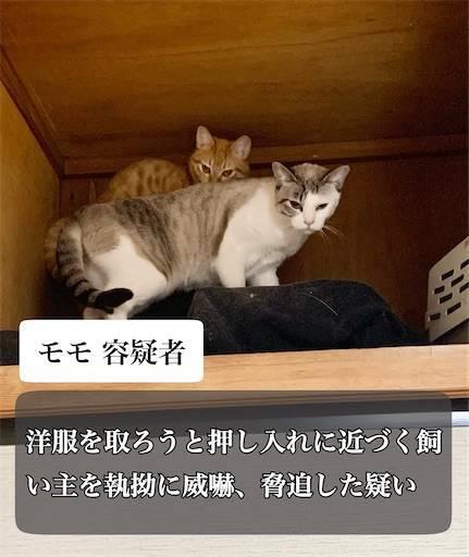 f:id:tabishite_korea:20210322215903j:image