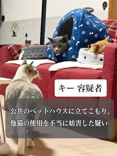 f:id:tabishite_korea:20210322220613j:image