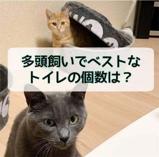 f:id:tabishite_korea:20210324113106j:image
