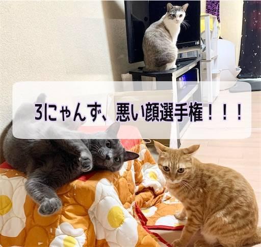 f:id:tabishite_korea:20210324113625j:image