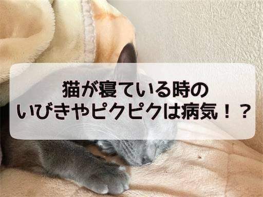 f:id:tabishite_korea:20210324120248j:image