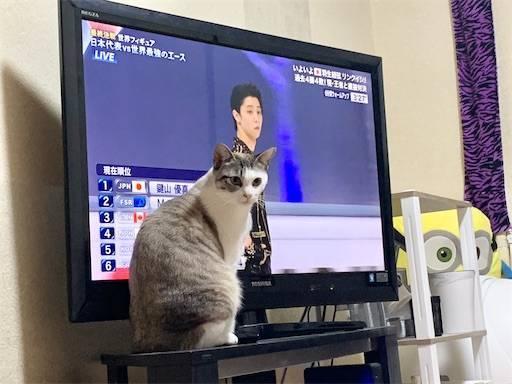 f:id:tabishite_korea:20210328105438j:image